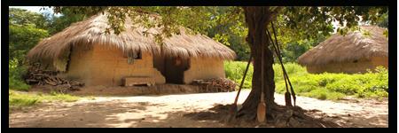 Organiser ses vacances au Sénégal