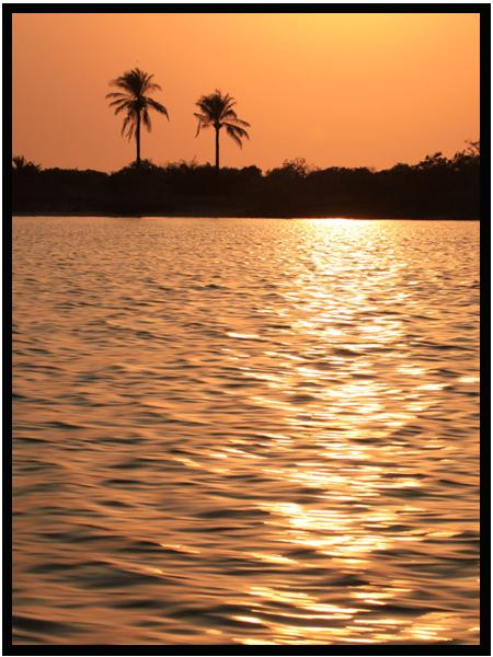 La pêche au Sénégal en Casamance